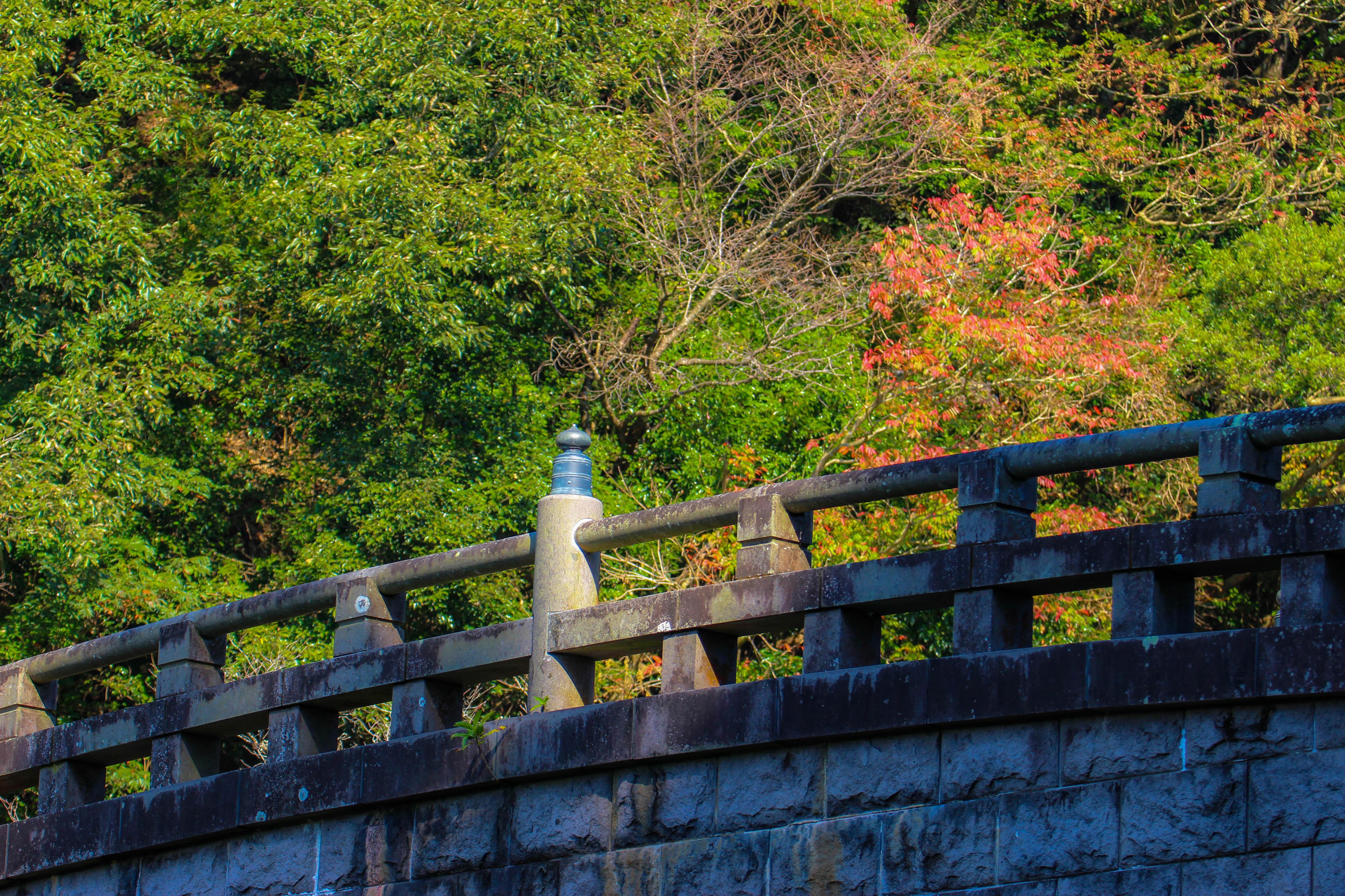 園内の奥にある石橋と後方の木々との相性も良い